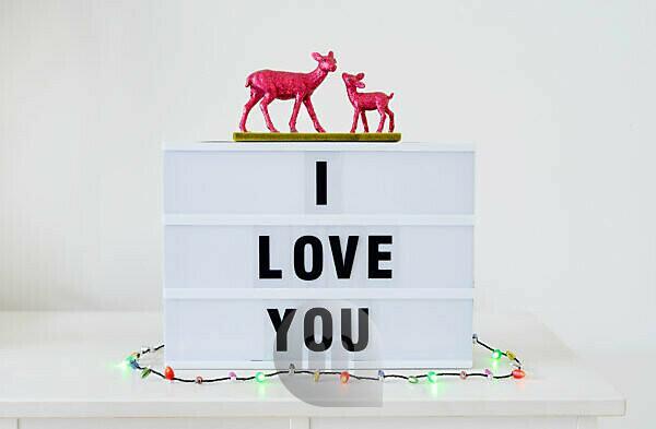 Schild, Leuchtkasten, I love you, Rehe, Lichterkette,