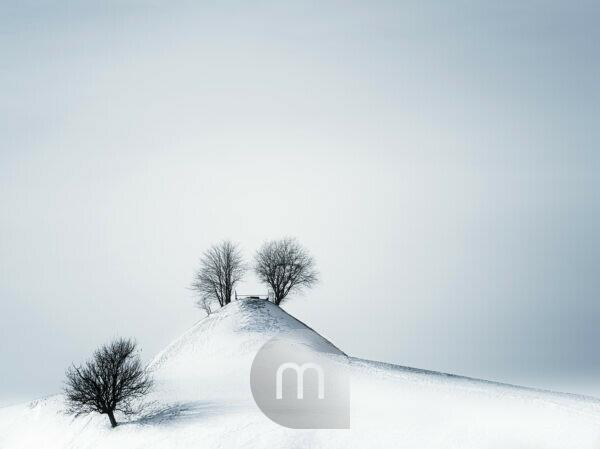 Winter landscape in Tannzapfenland in Canton Thurgau