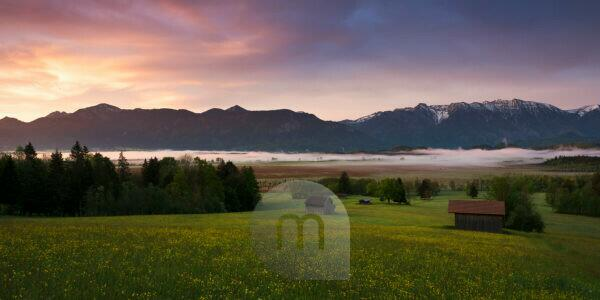 Murnau moor (Murnauer Moos), Bavaria, Germany