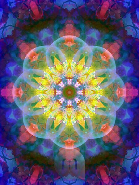 Photographic flower mandala, yellow, pink, turquoise, blue,