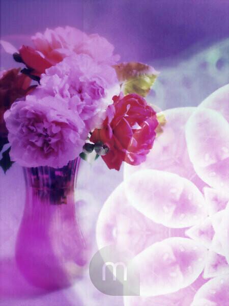 Photomontage, multiple exposure, flowers, multicolored, detail,