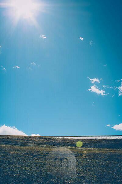 Meadow, blue sky, sun, backlight