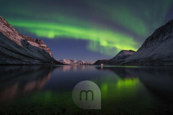 Europe, Norway, Troms, dancing Northern Lights over Grøtfjord