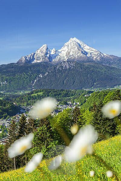 Blick auf Berchtesgaden mit Pfarrkirche vor dem Watzmannmassiv, Berchtesgadener Land, Oberbayern, Bayern, Süddeutschland, Deutschland, Europa