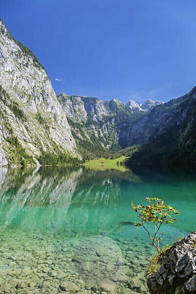 Obersee oberhalb vom Königssee, Schönau, Berchtesgadener Land, Oberbayern, Bayern, Süddeutschland, Deutschland, Europa