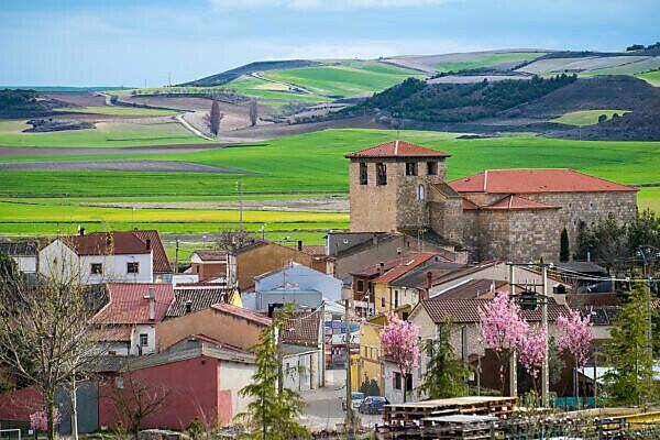 Überblick über das Dorf Padilla del Duero und die landwirtschaftlichen Felder innerhalb der Herkunftsbezeichnung der Weine Ribera del Duero in der Provinz Valladolid in Spanien Europa