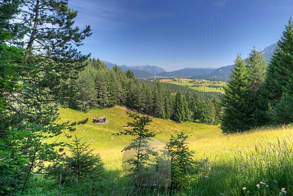 Blick von der Korbinianhütte bei Mittenwald gegen Buckelwiesen, Sommer, Bayern, Oberbayern, Deutschland,