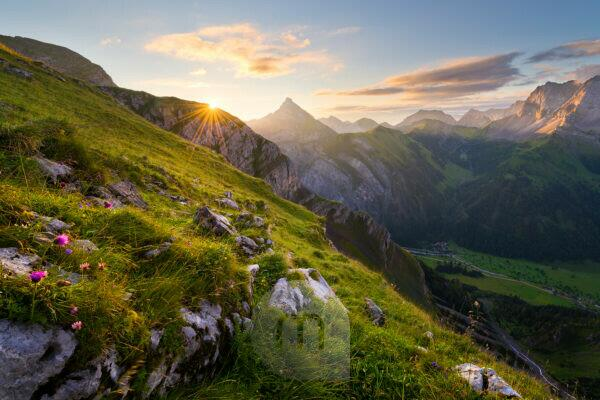 Austria, Karwendel, Tyrol, Sonjoch, Alps, mountain, mountains, picturesque, sunrise, star, back light, rock, meadow, flowers, mood, river, valley, Ahornboden, panorama, clouds, light, scenery, summit