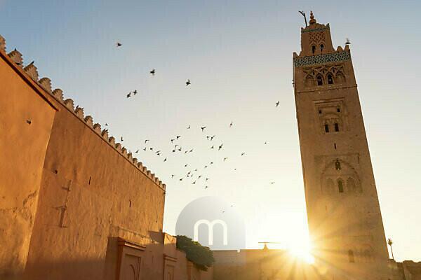 Morocco, Marrakech, Koutoubia Mosque, birds, back light