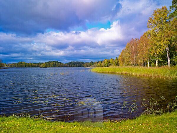 Schweden, Smaland, Ljungby, Herbst am Bolmen See