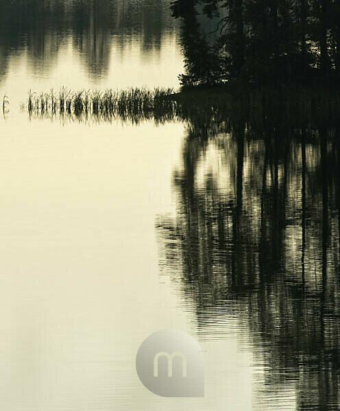 Schweden, Smaland, Eksjö, Morgenstimmung am Solgen-See