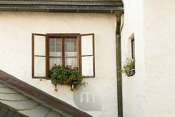 Fenster, geöffnet, Pflanzen, Fassade, Blumentopf