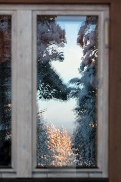 Finland, Lapland, Kittilä, reflection of forest in window