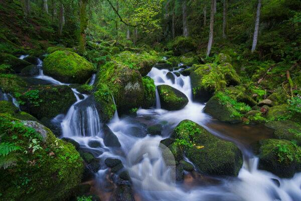 Upper course of the Triberg waterfalls in blue hour, Triberg, Black Forest, Baden Württemberg, Germany