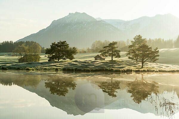Goldenes Morgenlicht am Ufer des Schmalensee, mit Spiegelung des Karwendel und der Bäume am Ufer