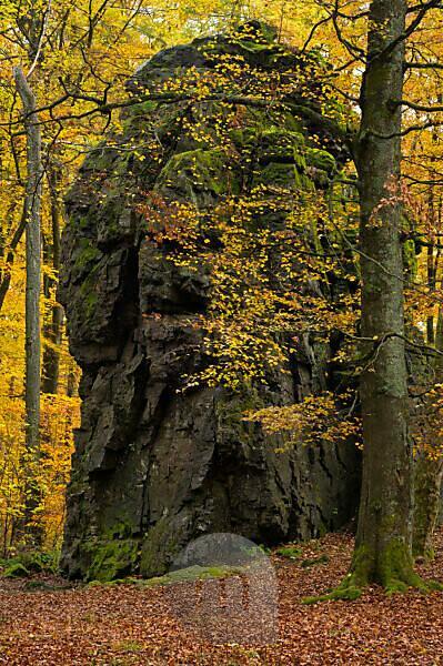 Europa, Deutschland, Hessen, Siegbach, Naturpark Lahn-Dill-Bergland, Herbst an den Wilhelmsteinen