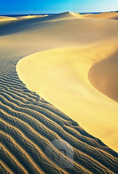 Maspalomas sandy dunes, Gran Canaria, Canary Islands, Spain