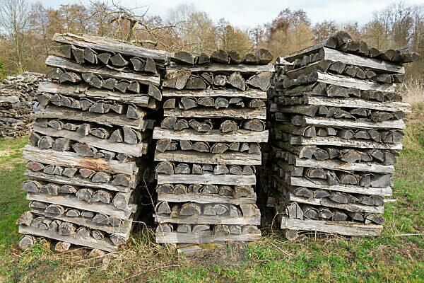 Altes Brennholz liegt auf einer Wiese gestapelt.