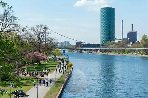 Deutschland, Hessen, Frankfurt, das Mainufer mit dem Main Tower im Hintergrund.