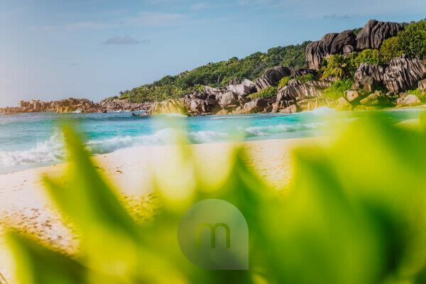 Grand Anse, La Digue island, Seychelles. Defocused lush green vegetation in foreground and gorgeous white sand paradise beach with turquoise waves and unique granite rock formation in background.