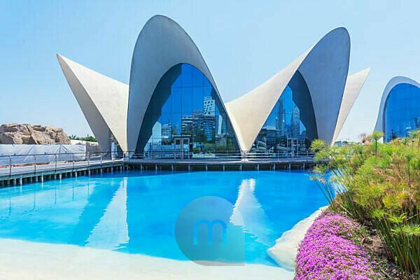 The Oceanographic Aquarium, City of Arts and Sciences, Valencia, Comunidad Autonoma de Valencia, Spain