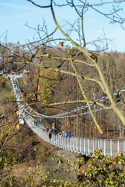 Germany, Saxony-Anhalt, Upper Harz, suspension bridge TitanRT in autumn, Rappbodetalsperre, resin.