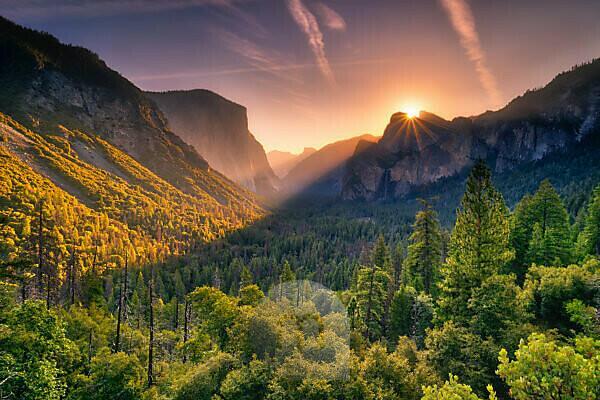 USA, United States of America, Yosemite National Park, California