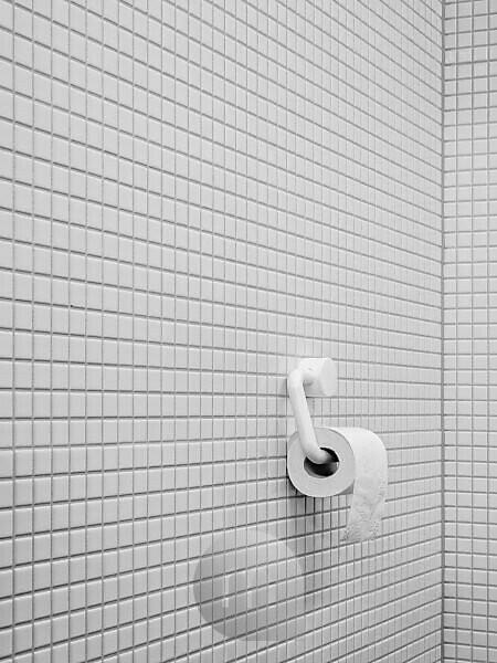 WC, toilet, toilet paper, tiles, white