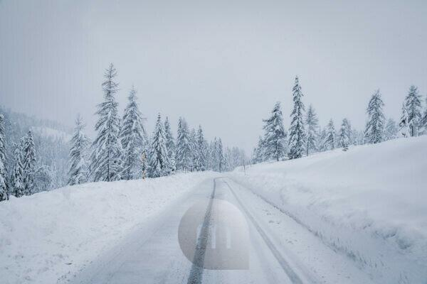 Snow covered mountain road through the forest, passo Tre Croci, Dolomites, Belluno, Italy