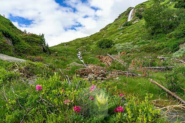 Europa, Österreich, Tirol, Ötztaler Alpen, Ötztal, Obergurgl, Idyllische Landschaft im hinteren Ötztal auf dem Weg zum Ramolhaus