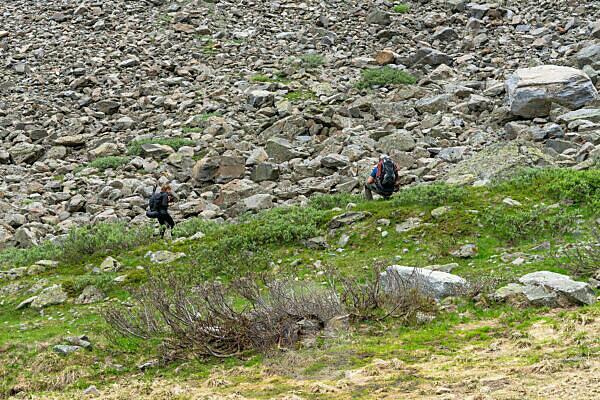 Europa, Österreich, Tirol, Ötztaler Alpen, Pitztal, Plangeroß, Bergwanderer beobachten ein Murmeltier