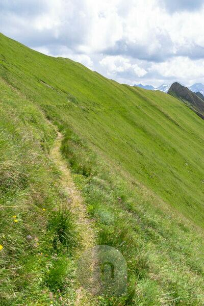 Europa, Österreich, Tirol, Osttirol, Kals am Großglockner, Sudetendeutscher Höhenweg durch einen steilen Berghang