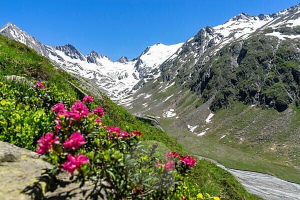 Europa, Österreich, Tirol, Ötztaler Alpen, Ötztal, Blick in das sommerliche Rotmoostal und auf den Rotmoosferner