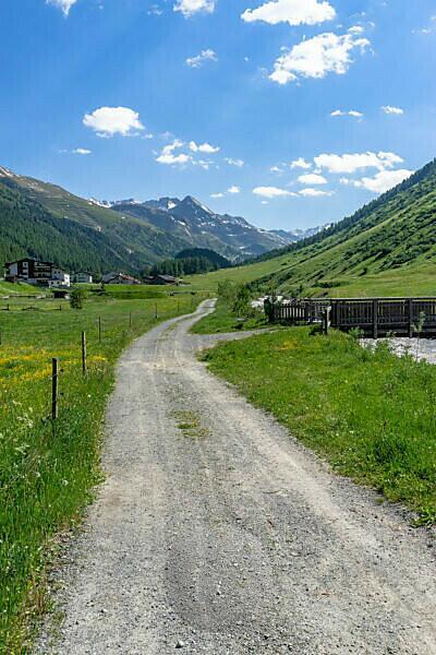Europe, Austria, Tyrol, Ötztal Alps, Ötztal, forest path along the Gurgler Ache towards Obergurgl