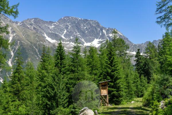 Europe, Austria, Tyrol, Ötztal Alps, Ötztal, mountain landscape in the Ötztal with the massif above Gries