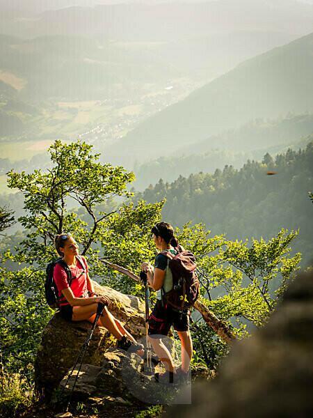 Wandern auf dem Zweitälersteig, Schmaler Wanderweg bei der Thomashütte, Kandel