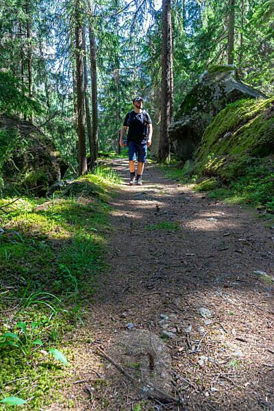 Europa, Österreich, Tirol, Ötztaler Alpen, Ötztal, Wanderer im Bergwald am Piburger See im Ötztal